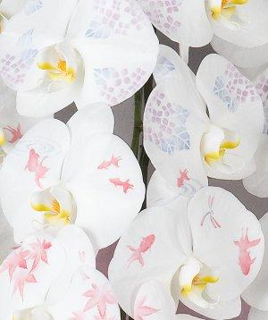 画像2: 化粧蘭3本立 プラチナ(36輪以上:つぼみ含む)